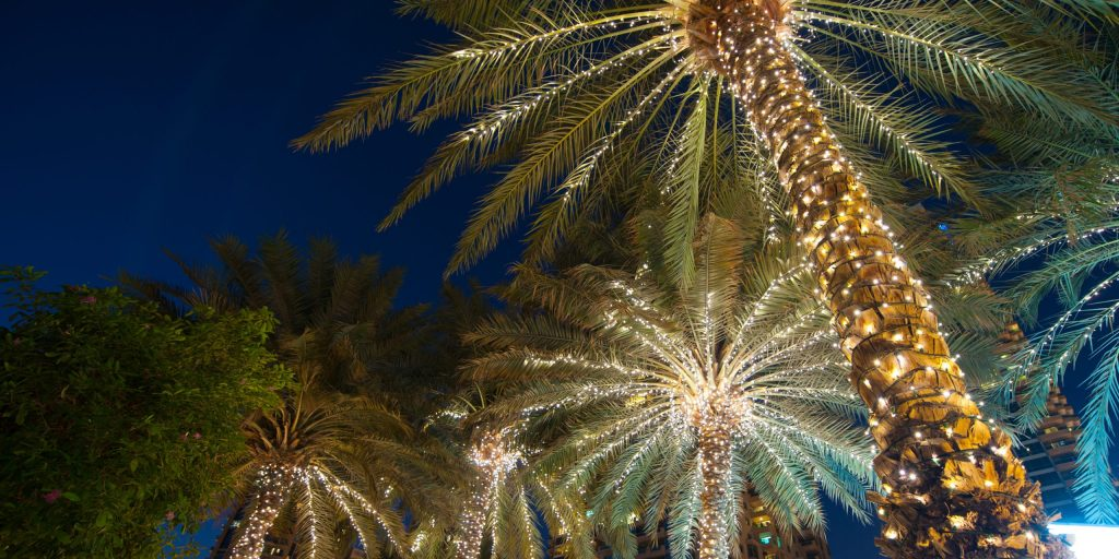 christmas decoration background palm tree.