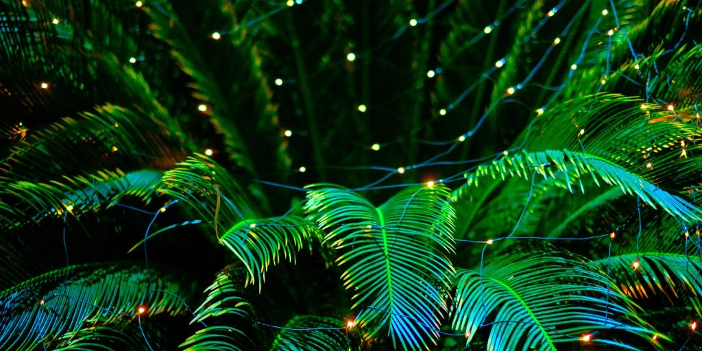 decoration lights lighting effects background for new year christmas holiday bright and colorful